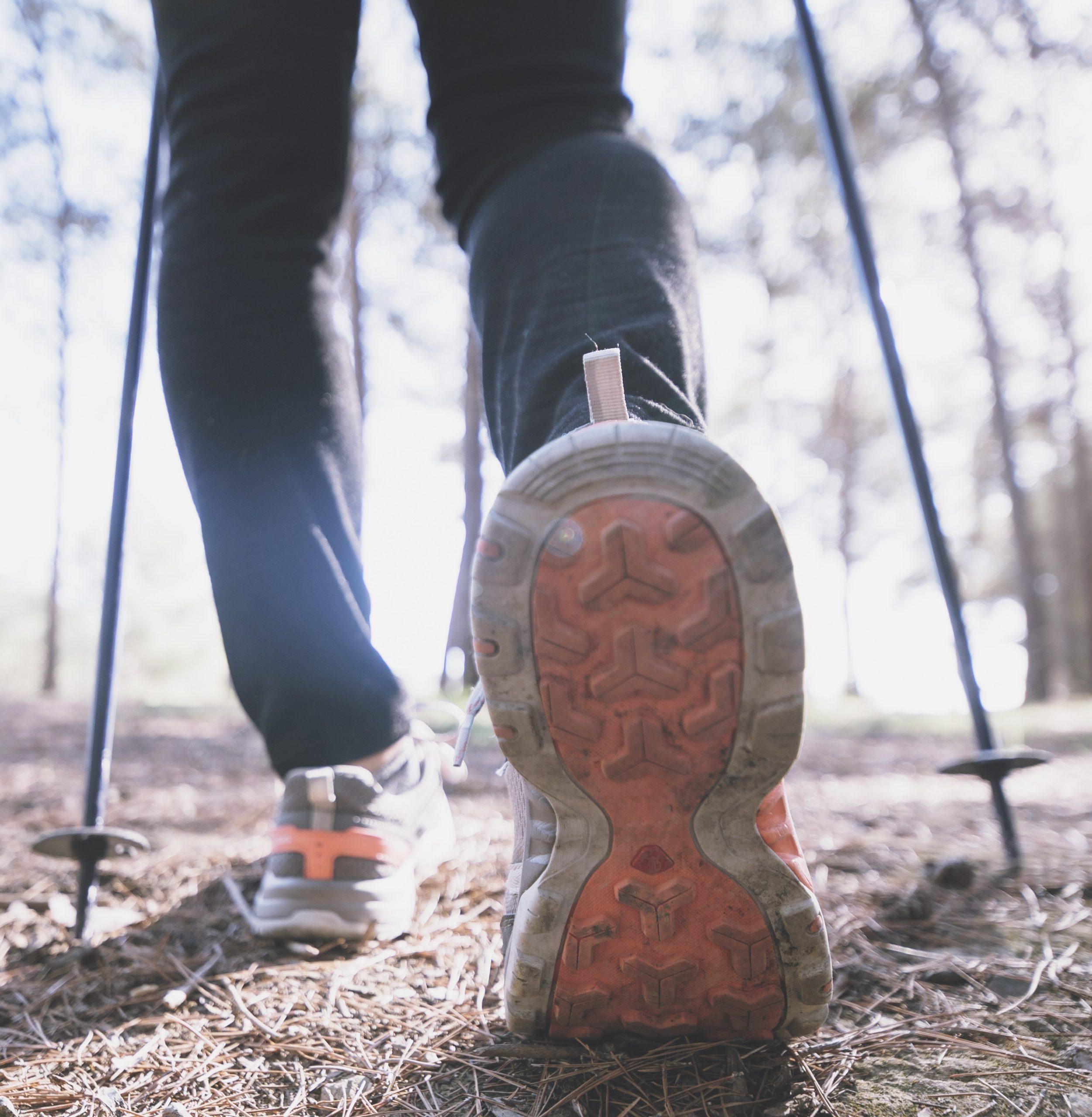 batons de marche pour ou contre par thibault gond